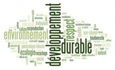 photovoltaique autoconsommation développement durable